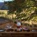 Wine tasting - Salt Spring Island BC, CA