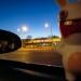 The Wiggliest Piggly - Nashville, TN